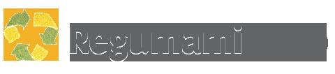 Logo regumami